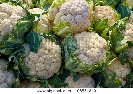 cauliflower cabbage texture pattern stacked in a row at market outdoor