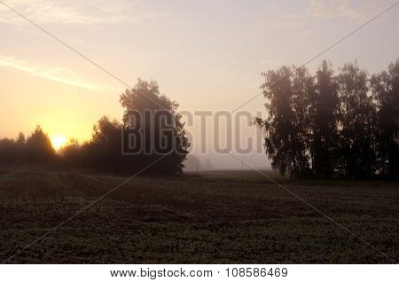 Sun Rising Through The Fog On Rural Landscape
