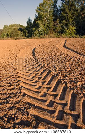 Tractor Tracks In Freshly Plowed Soil Field Sunny Day