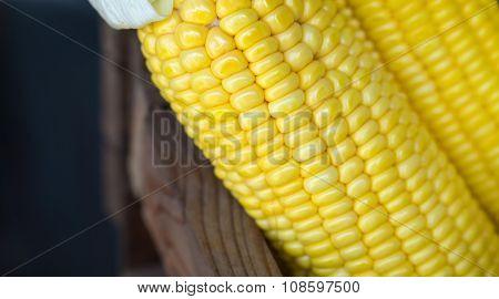 Grains Ripe Corn