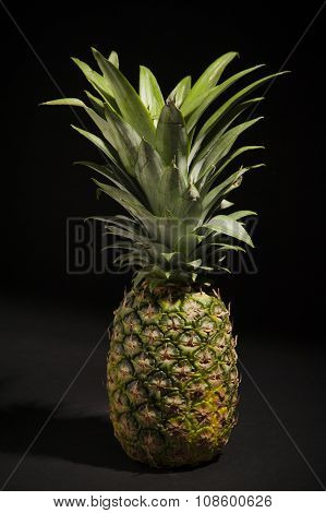 Pineapple Spotlight