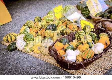 Vegetables. Color image