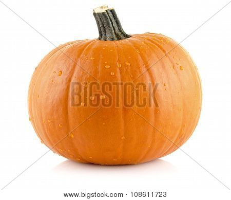 Closeup Shot Of Beaded Pumpkin Isolated On White