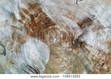 Weathered  Wood Textured