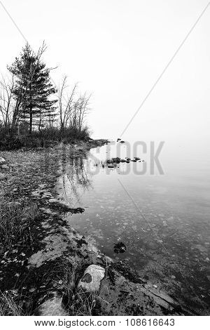 Ottawa River shoreline, horizon shrouded in dense fog in black and white.