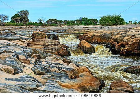 African River In Savannah