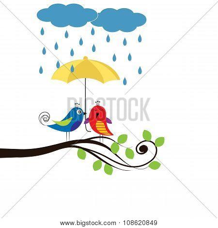 Birds With Umbrella