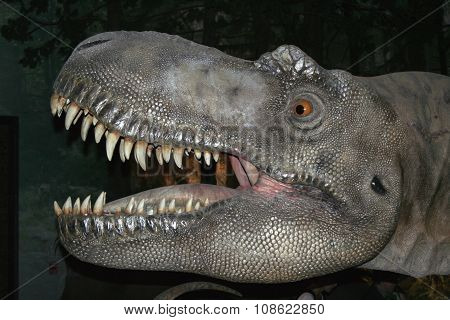 Model of Tyrannosaurus rex
