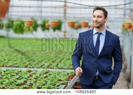 Confident businessman standing in the greenhouse