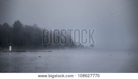 Heavy Fog shrouding peninsular forest - mist rising from water.