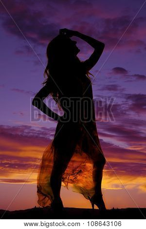 Silhouette Of A Woman In A Sheer Dress Look Up