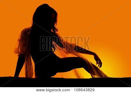 Silhouette Woman In Sheer Nightgown Knee Up