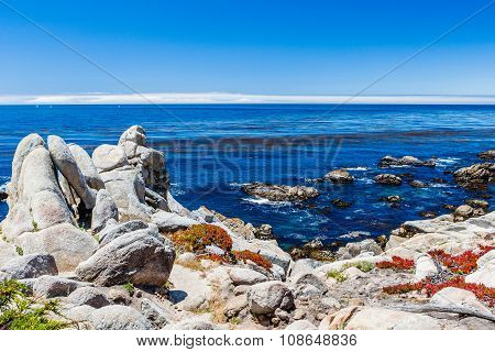 Pescadero Point At 17 Mile Drive In Big Sur California