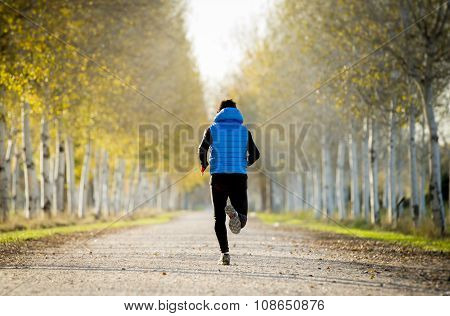 Sport Man Running Outdoors In Off Road Trail Ground With Trees Under Beautiful Autumn Sunlight