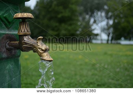Brass dragon water tap in park
