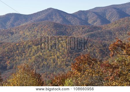 Colorful Autumn In The Appalachiam Mountains
