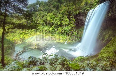 Dam'bri Falls in the afternoon sun