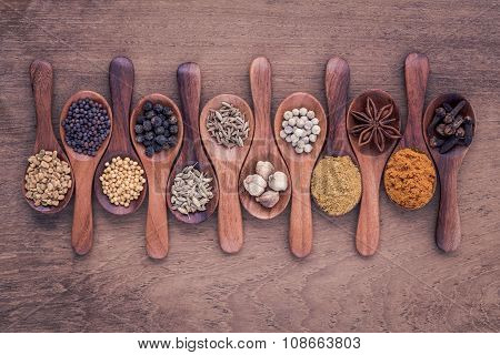 Assorted Of Spices  In Wooden Spoon  Black Pepper ,white Pepper, Black Mustard,yellow Mustard,fenugr
