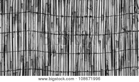 Texture Of Wall Of Bound Bamboo Black And White