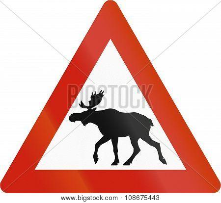Norwegian Road Warning Sign - Moose Crossing