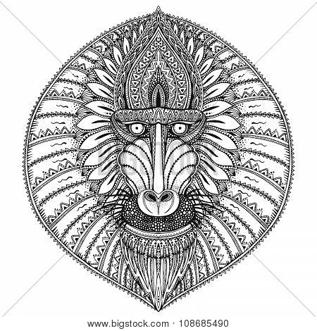 Hand Drawn Vector Ornate Baboon Face Illustration.