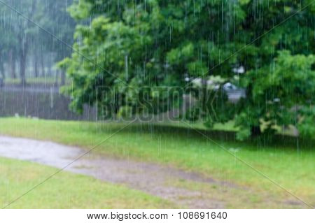 Abstract Blurred Rain Drop Tracks With Tree On Background