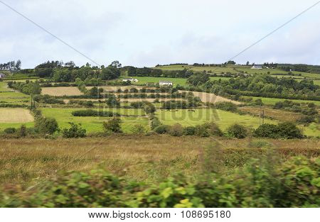 Scenic view of Rural farmhouses among farmland.