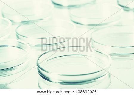 Petri Dish.