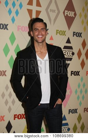 LOS ANGELES - AUG 6:  Cheyenne Jackson at the FOX TCA Summer 2015 All-Star Party at the Soho House on August 6, 2015 in West Hollywood, CA