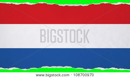Flag of the Netherlands, Dutch Flag painted on paper texture