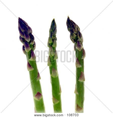 Asparagus Stalks
