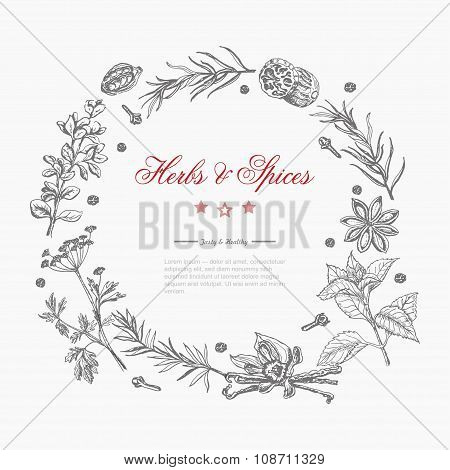 Vector Round Frame Of Spices And Herbs  On A White Background