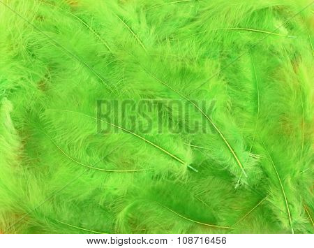 Background - small light green plumes situated irregularly