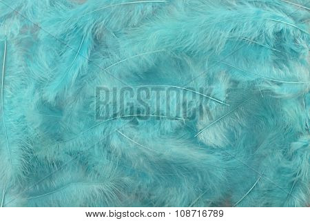 Background - small light turquoise plumes situated irregularly