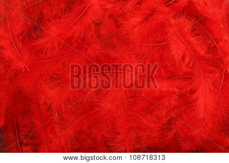 Background - small red plumes situated irregularly