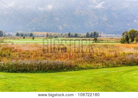 Classic Golf Course