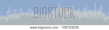 Winter background with grass bushes