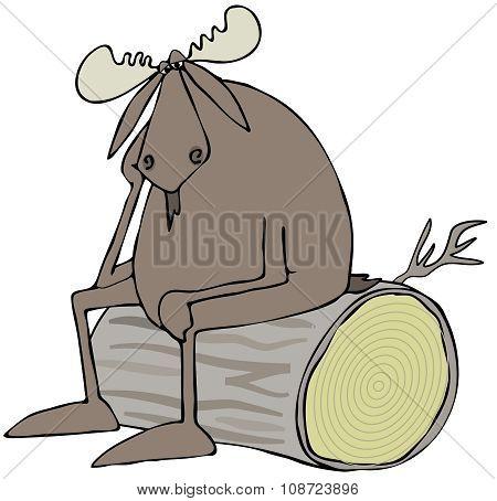 Depressed bull moose