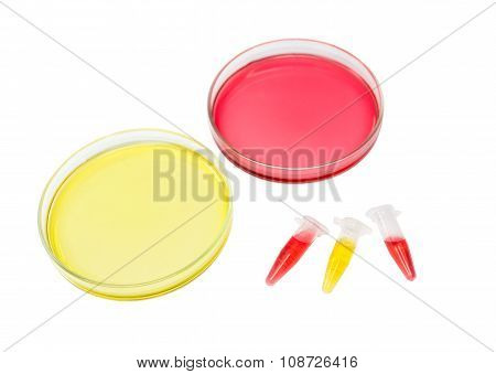 Red And Yellow Solution In Plate And Micro Tube