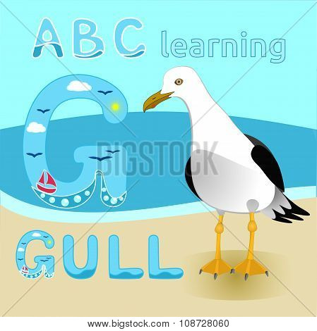 Seagull bird cartoon character Gull vector Short tailed albatross Sea beach fauna Great for kids ill