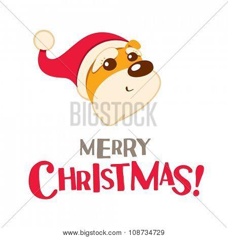 Merry Christmas! Christmas puppy.