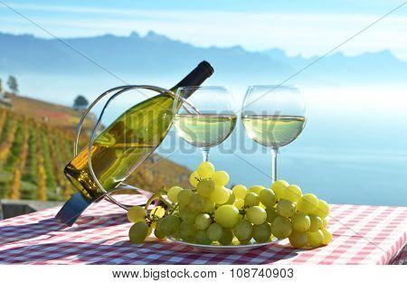Wine and grapes against Geneva lake. Lavaux, Switzerland