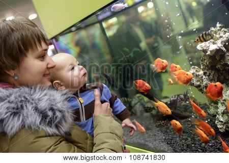 Mother With Her Baby Boy At Aquarium