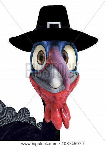 Silly Toon Turkey Wearing Pilgrim Hat.