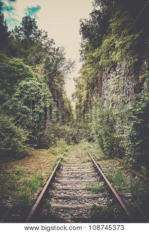 Old Mystic Railroad In A Forest