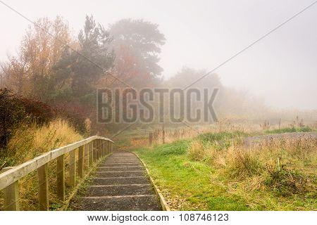 Steps To Flodden Monument In Fog