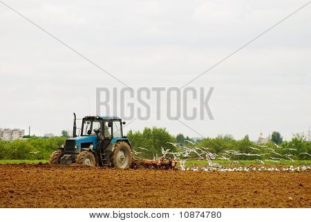 The Tractor Ploughs An Agricultural Field