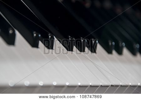 Classic Piano Keyboard Detail