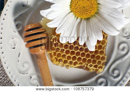 Honeycomb, dipper and chamomile on white plate closeup