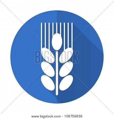 grain blue web flat design icon on white background